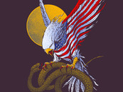 domeh wearing Eagle Of The States by domeh