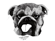 Bulldog T-Shirt Design by