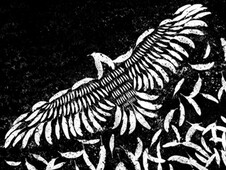 Of A Feather T-Shirt Design by