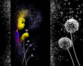 Dandelions by 4everyoung