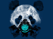 DBH Panda by graphicollapse