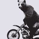 pacpacpac wearing Motorcross Bear by thecreep