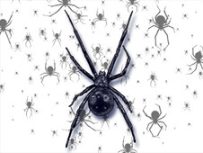 arachnophobia T-Shirt Design by