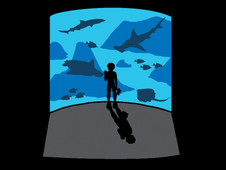 Shark Tank T-Shirt Design by