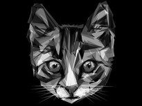 Geometric Cat T-Shirt Design by
