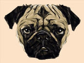 elici22 wearing Geometric Pug by JoeConde