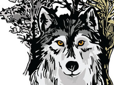 Wolf and Forest T-Shirt Design by