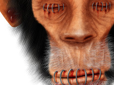 Wise Monkey ? T-Shirt Design by