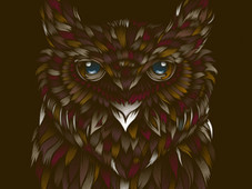 WILD OWL T-Shirt Design by