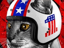 Evel Catnievel T-Shirt Design by