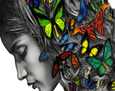 Thinking with butterflies by Renato