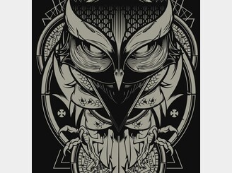 Alchemy Owl by Hydro74