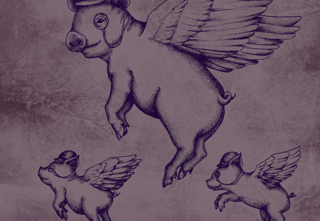 Flying Monocle Pig