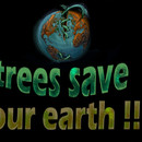"trees save our earth..."""""""""""""""""" by amosbasilo"