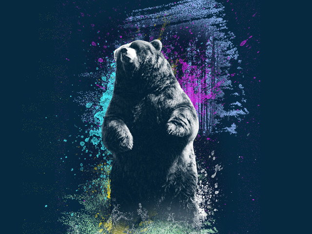 BEAR ON MY MIND