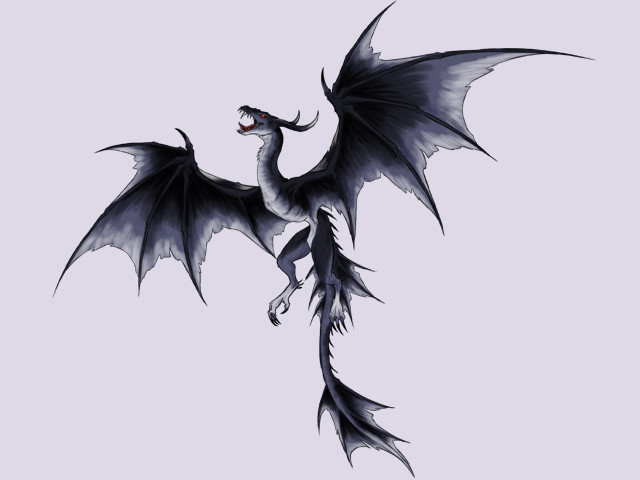 Echo Dragon