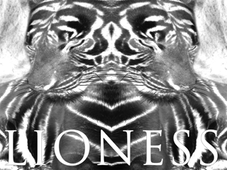Lioness T-Shirt Design by