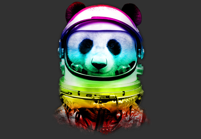 SPACE PANDA  Artwork