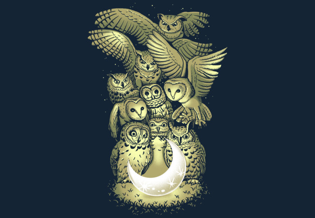 owl and moon  Artwork
