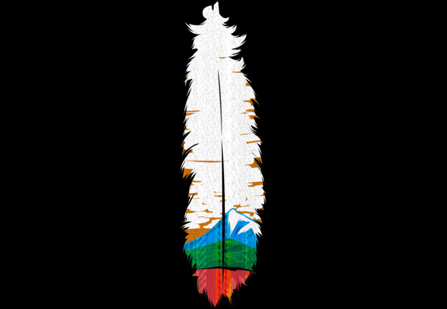 Feather Art  Artwork