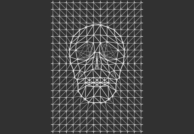 Triangles and Line Art Skull  Artwork