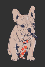 French Bulldog Boss