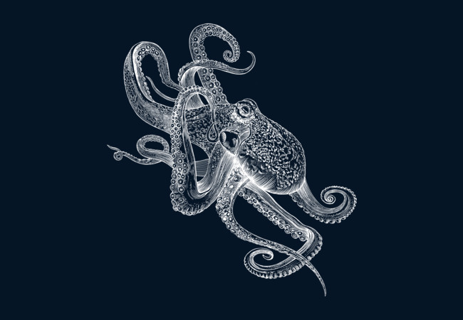 White Octo  Artwork