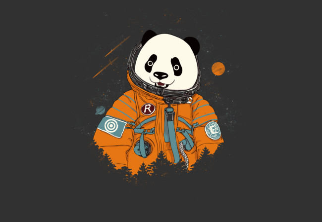 Pandastronaut  Artwork