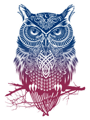 T shirt design categories T shirt with owl design