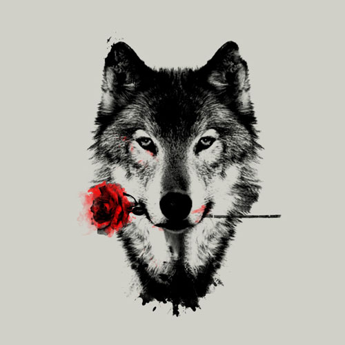 black rose bw black and white wolf grey wolf tshirt tee