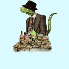 illustrative genuine lizard top hat medicine vintage