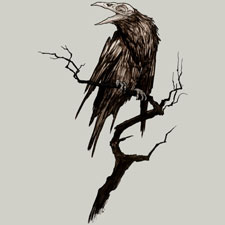 crow moutchy black and white one color dark art tshirt tee