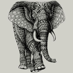 elephant detailed tshirt tee design art bioworkz