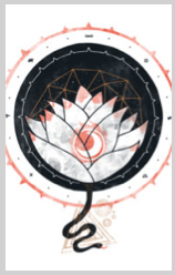 lotus white flower againstbound nature outdoors geometric indie