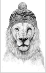 black and white pencil sketch drawing one color lion detailed hipster beanie tshirt tee