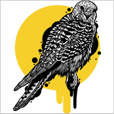 golden hawk drawing illustration vector bird animal tshirt tee casiegraphics