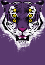 I got the eyes of the tiger