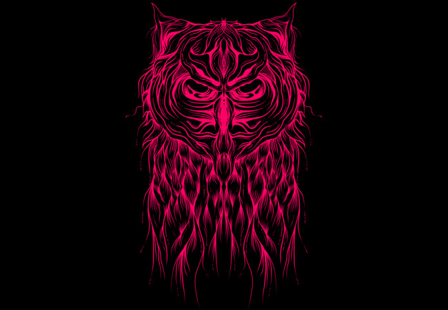 Mystic Owl  Artwork