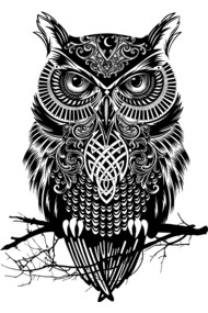 Warrior Owl