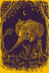 night elephant