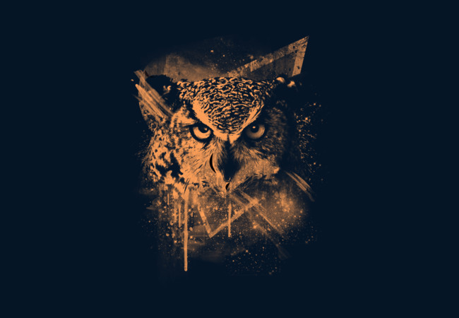 COSMIC OWL  Artwork