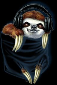 Pocket Sloth Jamming to Beats of My Heart