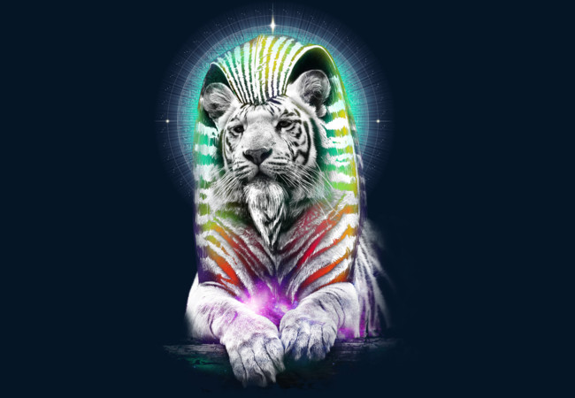 Constellation: TIGR15-Major  Artwork