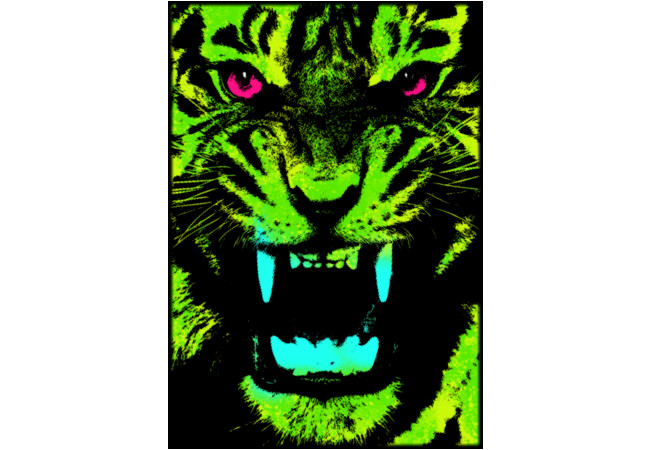 Tiger Pop T-shirt 03  Artwork