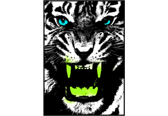 Tiger Pop T-shirt  Artwork