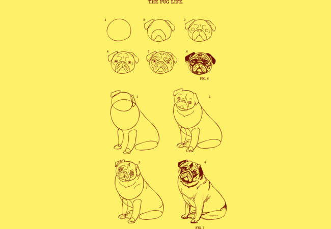 How To Draw Pug Life  Artwork