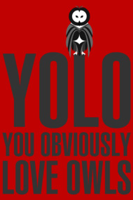 YOLO you obviously love owls