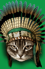 THE CHIEF CAT