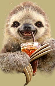SLOTH & SOFT DRINK