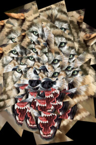 Wolf Collages